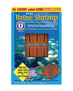 San Francisco Baby Brine Shrimp