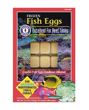 SF -  Fish Eggs