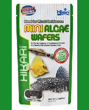 Hikari - Mini Algae Wafers