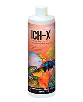 Hikari - Ich-X