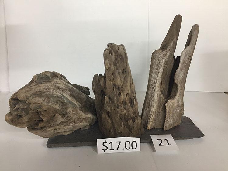 Driftwood #21