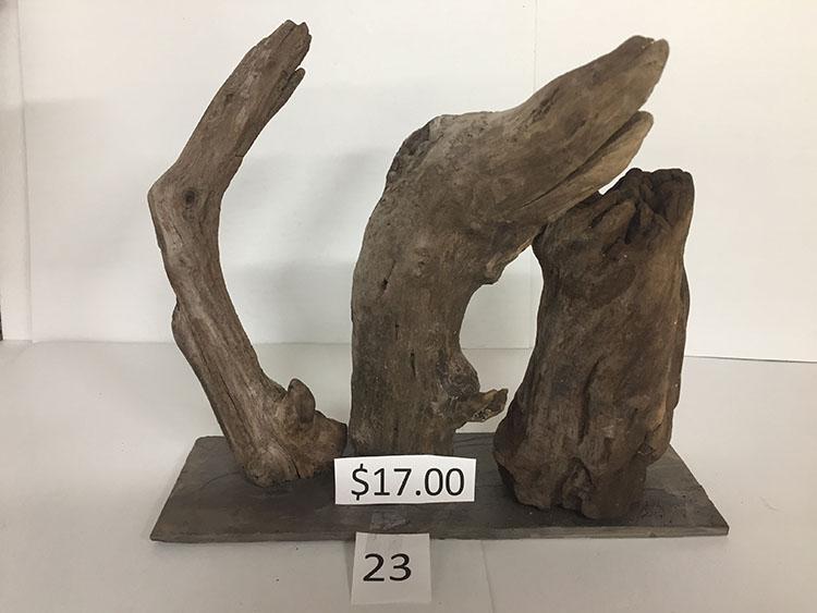 Driftwood #23