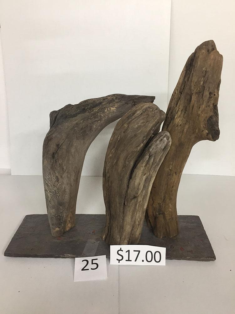 Driftwood #25